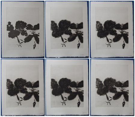 Aguafuerte Y Aguatinta Zao - 6 états de la gravure