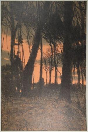 Litografía Kampmann - Abendröthe (Bäume im Abendrot)
