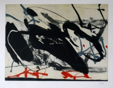 Aguafuerte Y Aguatinta Bird - Abstract 5