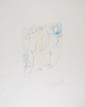 Punta Seca Dali - Adam et Eve - Adam and Eve (suite Le Paradis Terrestre)
