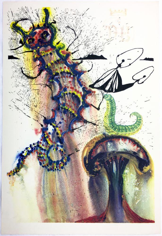 Heliograbado Dali - ADVICE FROM A CATERPILLAR (For Alice in Wonderland. New-Yok 1969).