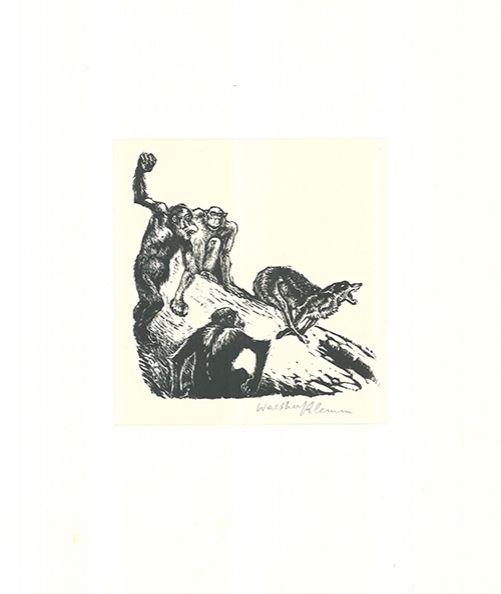 Grabado En Madera Klemm - Affen jagen den Wolf