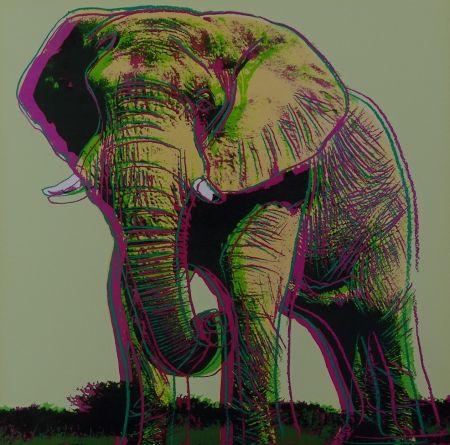 Serigrafía Warhol - African Elephant