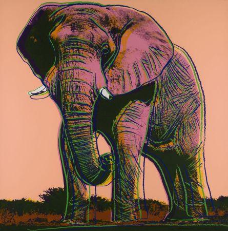 Serigrafía Warhol - African Elephant (FS II.293)