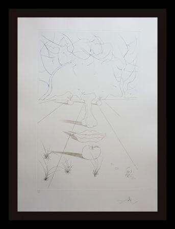 Grabado Dali - Aurelia Visage Surrealiste