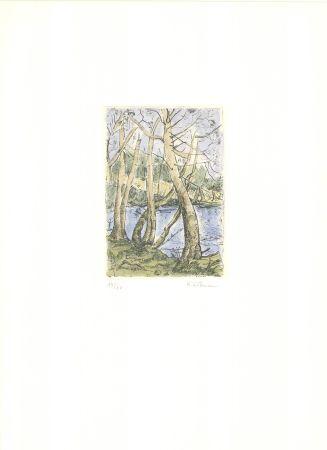 Grabado Wittmann - Bäume