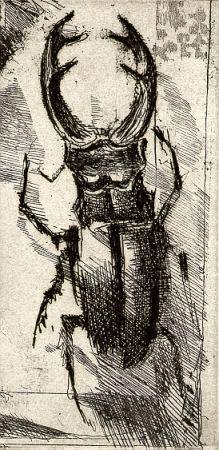 Libro Ilustrado Calandri - Ballades et Rondeaux du Testament Villon