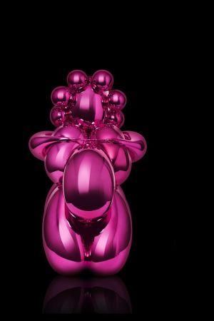 Sin Técnico Koons - Balloon Venus