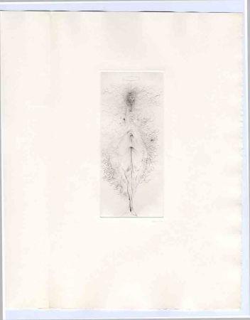 Libro Ilustrado Bellmer - Bataille (Georges). Madame Edwarda.