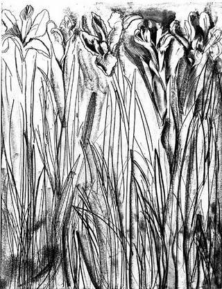 Grabado Dine - Black & White Flowers I