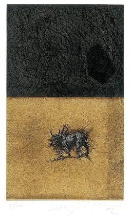 Aguatinta Paladino - Bull