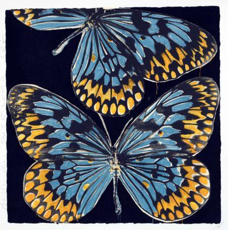 Serigrafía Sultan - Butterflies