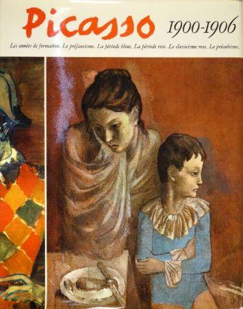 Libro Ilustrado Picasso - Catalogue raisonné de l'oeuvre peint. 1900, 1901, 1906: Pierre Daix - 1902 à 1905: Georges Boudaille.