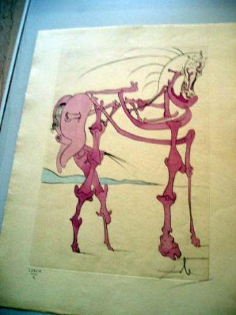 Grabado Dali - Cheval En Rose (Quevedos Visioner)