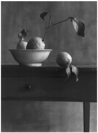 Fotografía Anonyme - COIGNY Christian (1946).  Nature morte aux citrons
