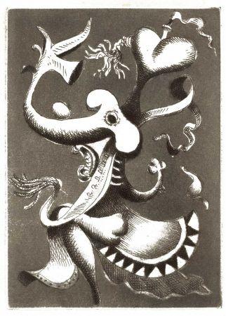 Libro Ilustrado Seligmann - COLLET (Jean-Paul). Flaques.