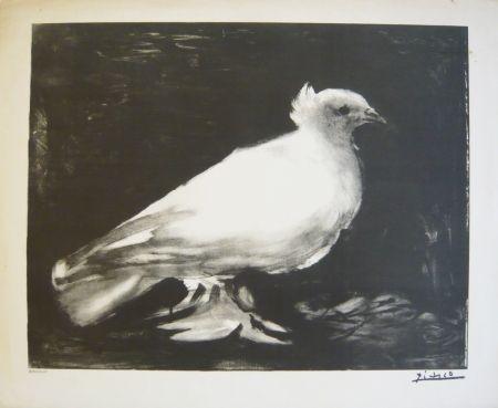 Litografía Picasso - Colombe