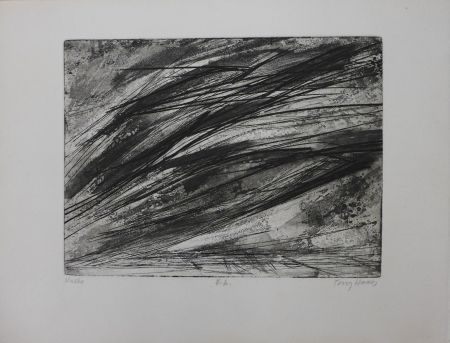 Aguafuerte Haass - Composition