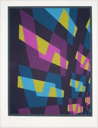 Litografía Hinterreiter - Composition 6