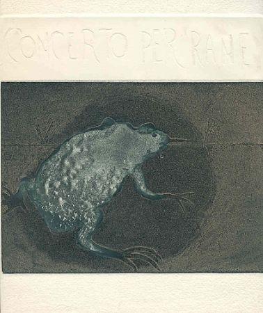 Libro Ilustrado Guarienti - Concerto per rane