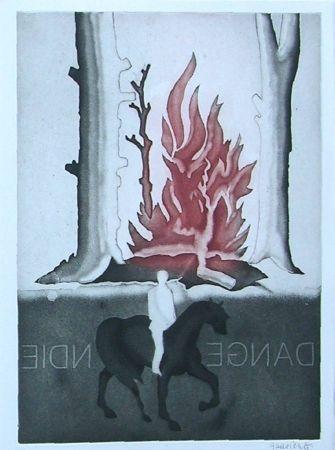 Libro Ilustrado Guarienti - Crachefeu