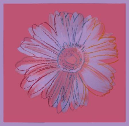 Serigrafía Warhol - Daisy, ca