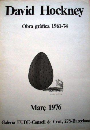 Sin Técnico Hockney -  David Hockney, Obra Gràfica 1961-74
