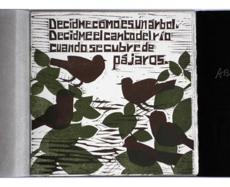 Libro Ilustrado Brancaforte - Decidme cómo es un árbol