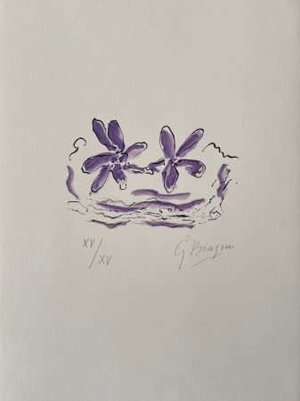 Grabado En Madera Braque - Deux fleurs violettes
