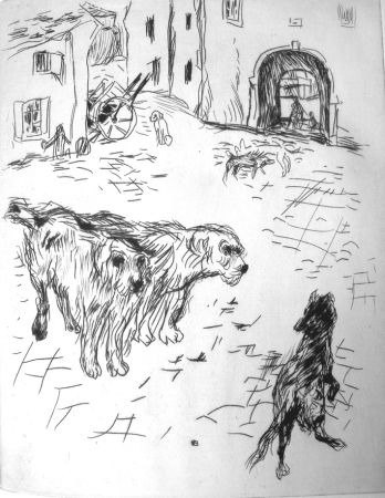 Libro Ilustrado Bonnard - Dingo