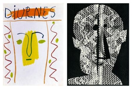 Libro Ilustrado Picasso - Diurnes