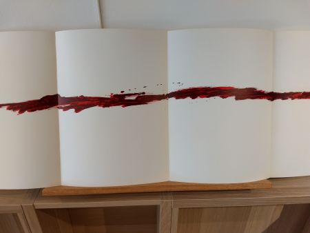 Libro Ilustrado Tapies - Dlm180