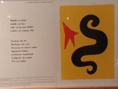 Libro Ilustrado Calder (After) - DLM195