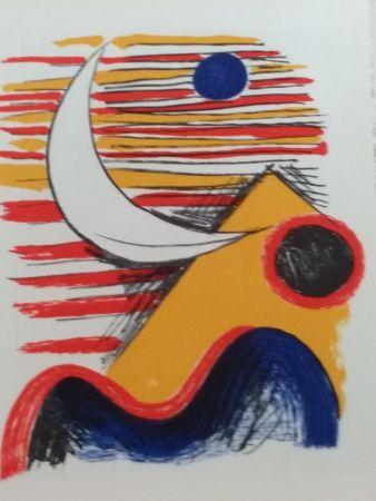 Libro Ilustrado Calder - DLM 121 122