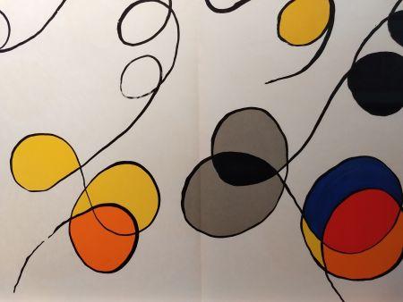 Libro Ilustrado Calder - DLM 173