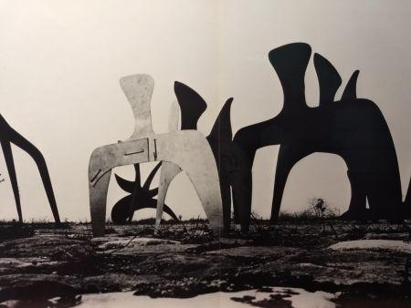 Libro Ilustrado Calder - DLM 190