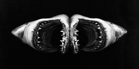 Sin Técnico Longo - Double Shark
