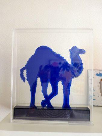 Múltiple Marotta - Dromadaire bleu