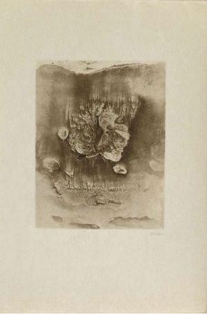 Grabado Bellmer -  Entre Deux Eaux