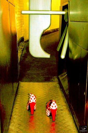 Fotografía Bohorquez - Exit