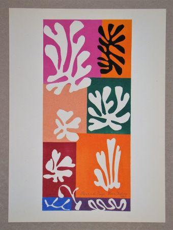 Litografía Matisse (After) - Fleur De Neige - 1951