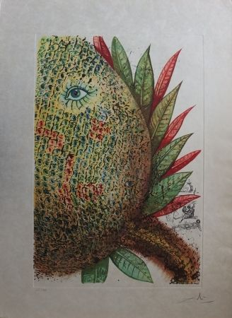 Aguafuerte Dali - Fleurs Rêvées : L'Ananas