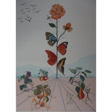 Litografía Dali - Flordali II : la rose papillon