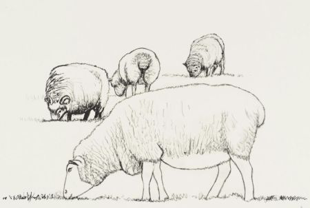 Litografía Moore - Four Sheep Grazing