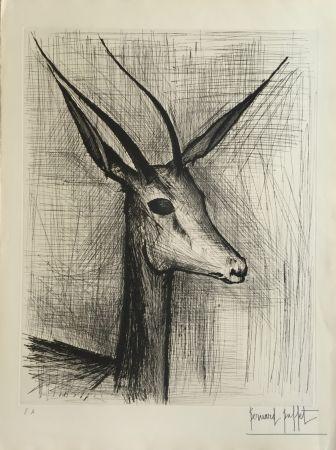 Aguafuerte Buffet - Gazelle
