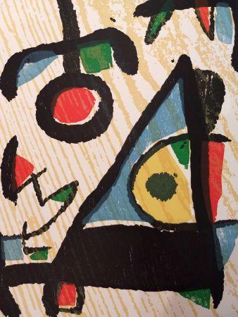 Libro Ilustrado Miró - Graveur 2
