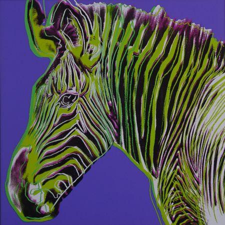 Serigrafía Warhol - Grevy's zebra