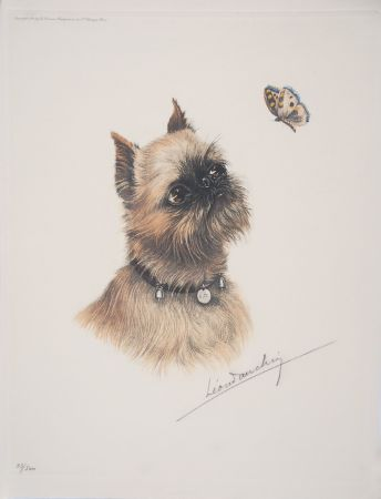Aguafuerte Danchin - Griffon Bruxellois et papillon - Brussel Griffon and butterfly