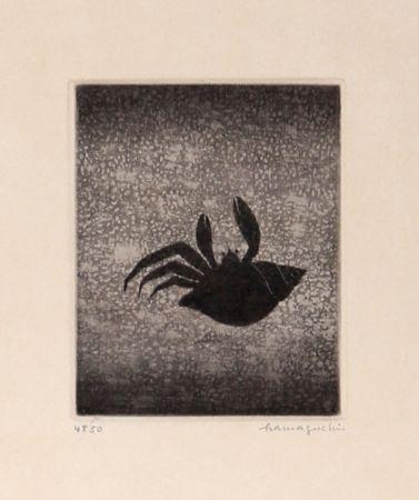 Manera Negra Hamaguchi - Hermit Crab