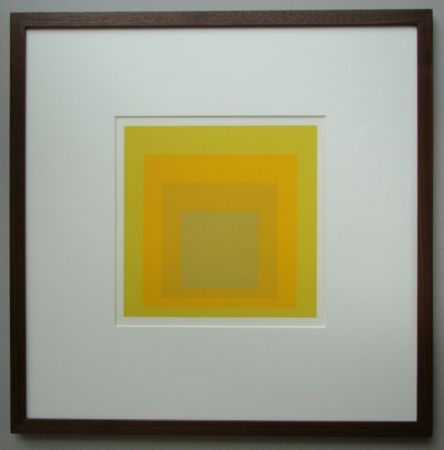 Sin Técnico Albers - Homage to the Square
